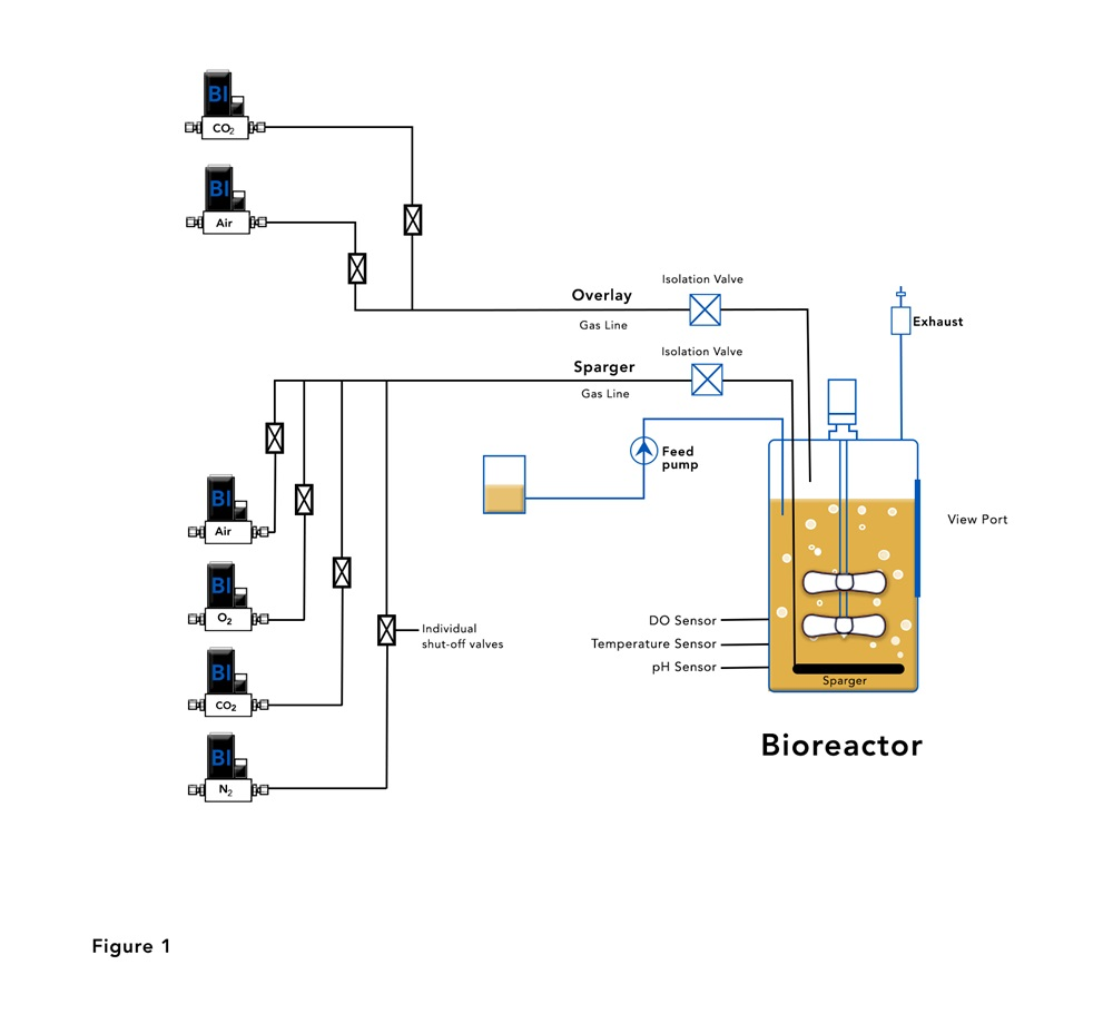 Bioreactor with Mass Flow Controllers